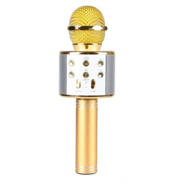 2223770861_besprovodnoj-mikrofon-dlya
