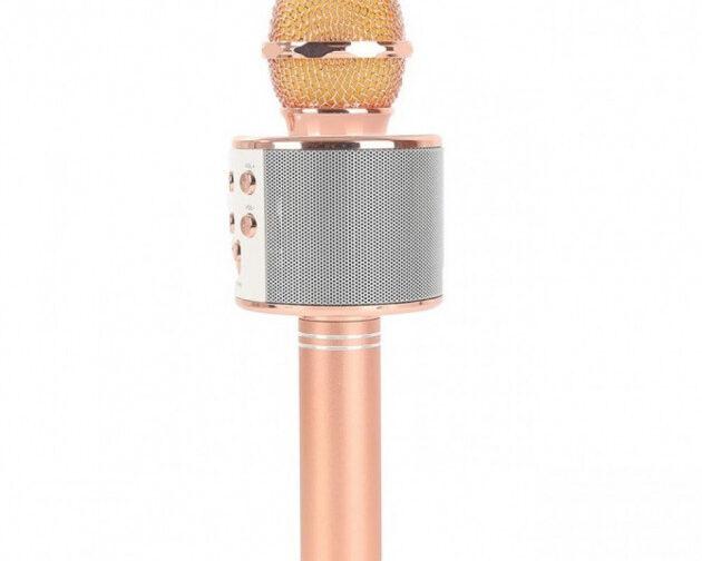 2223914635_besprovodnoj-mikrofon-karaoke