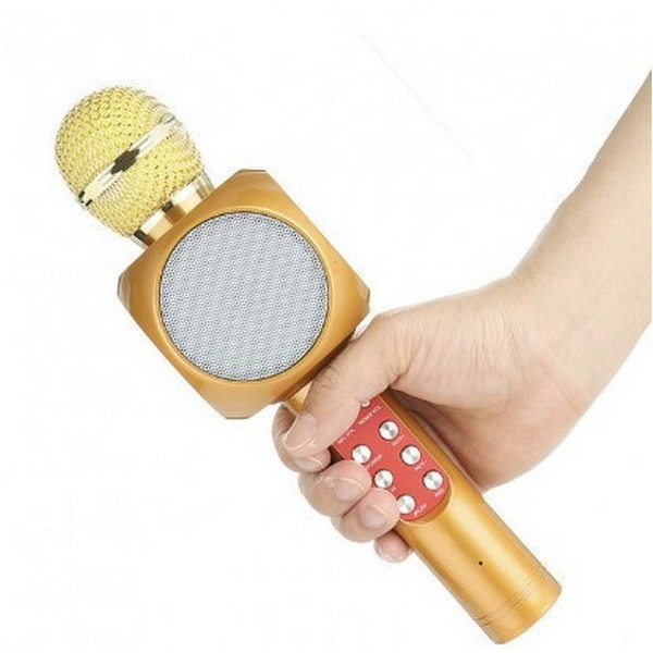 2239263338_mikrofon-s-funktsiej