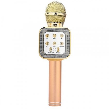 2387824860_besprovodnoj-mikrofon-karaoke-ws-1818