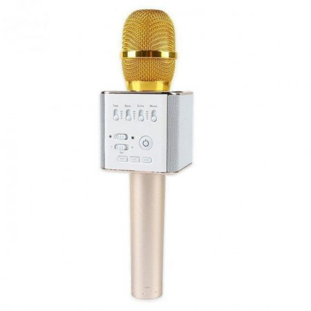 2387859928_portativnyj-karaoke-mikrofon