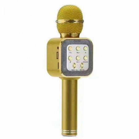 1978242138_besprovodnoj-mikrofon-karaoke