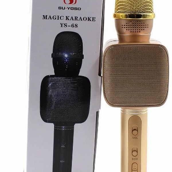 2393166432_mikrofon-dm-karaoke